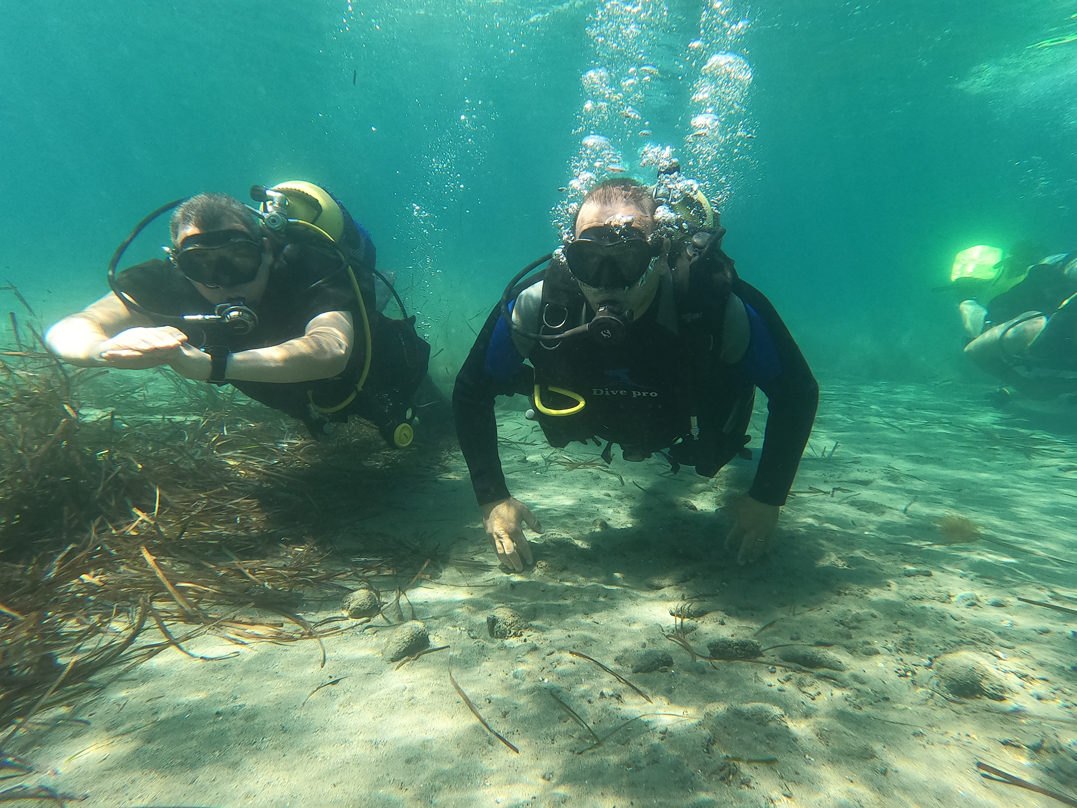 Cyprus Minister, MEP dive at sunken city of Amathus